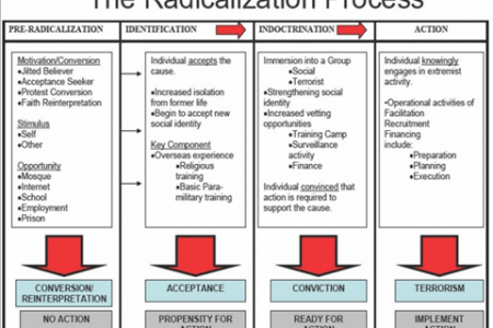 Dynamics Leading to Radicalization