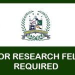 SENIOR RESEARCH FELLOW REQUIRED